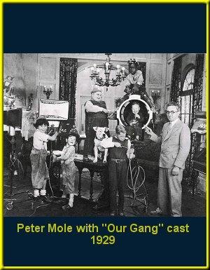 Peter Mole
