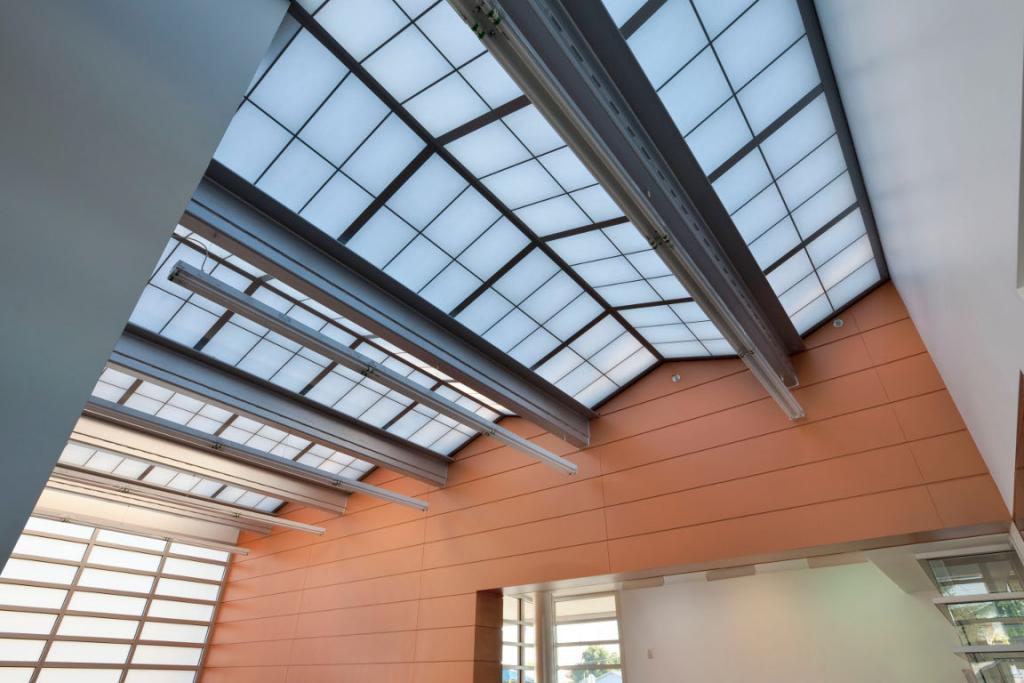 Skylight above front office area